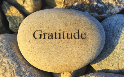 Gratitude and Platitude